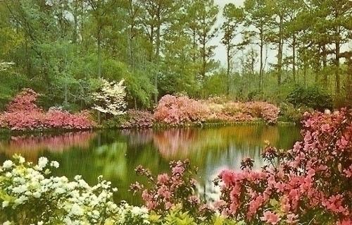 Bellingrath Gardens Mobile Alabama Set Of 4