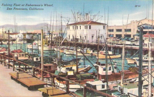 Fisherman 39 s wharf san francisco california postcard for Fish store san francisco