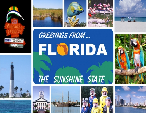 Greeting From Florida The Sunshine State Postcard
