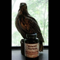 Eye of the Hawk Tea (Eye Health & Enhance Vision) - 2 oz