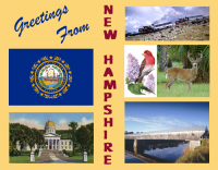 New Hampshire Greetings Custom Postcard