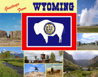 Wyoming Greetings Custom Postcard