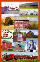 Barns 'n' Farms Americana Poster