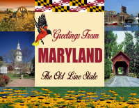 Maryland Greetings Postcard