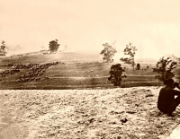 Antietam, Maryland. Battlefield (Download)