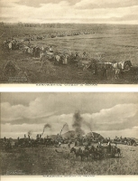 Harvesting/Threshing Wheat in Texas - Set of 2 Postcards