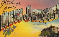 Greetings From New Jersey Postcard