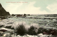 North Beach, Washington Postcard