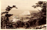 Cape Perpetuo, Oregon Postcard