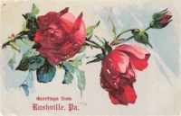 Greetings From Rushville, Pennsylvania Postcard