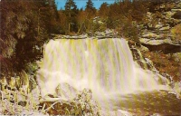 Blackwater Falls, West Virginia Postcard