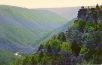 Blackwater Canyon, West Virginia Postcard