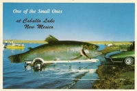 Caballo Lake, New Mexico Postcard