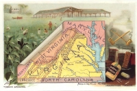 Virginia Reproduction Vintage Postcard