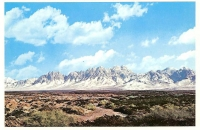 Organ Mountains, New Mexico Postcard