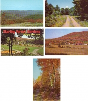 New York Scenery - Set of 5 Postcards
