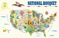 National Bouquet Map