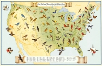 State Birds & Flowers Map